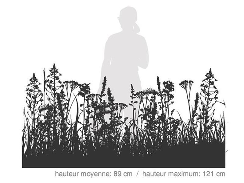 Maxi Couleurs Locales / SÉRIE DÉCOR