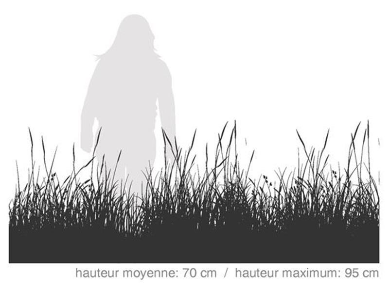 Graminord / SÉRIE HABITAT