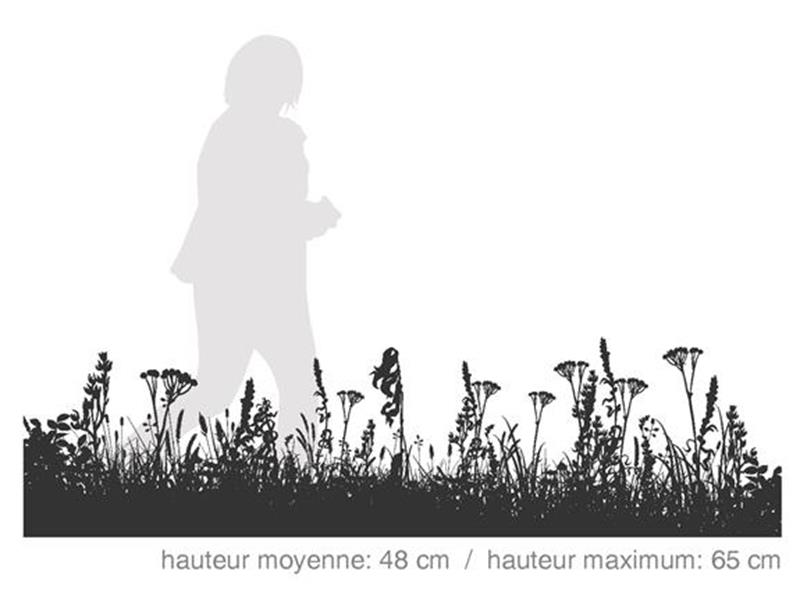 Prairie Boréale / SÉRIE HABITAT