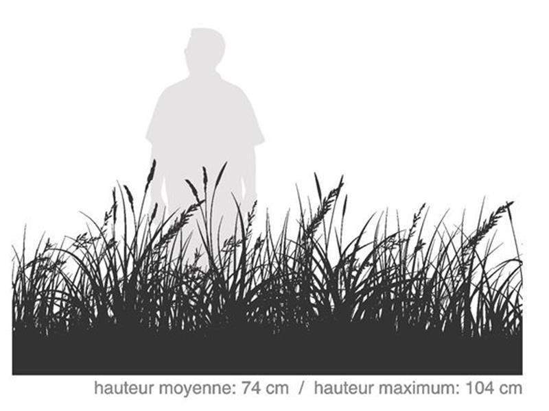 Forestier / SÉRIE HABITAT