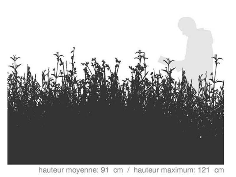 Biorex Floradiversité / SÉRIE TECHNIQUE