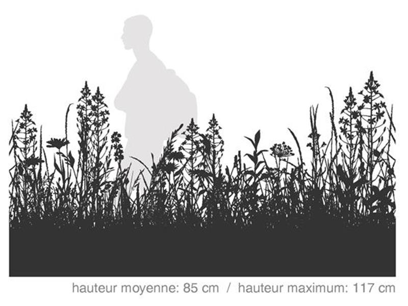 Pionnier / SÉRIE HABITAT