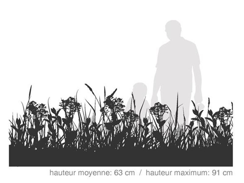 Forestier Plus / SÉRIE HABITAT